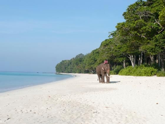 Andaman And Nicobar Islands: Very beautiful Islands.. full of history.. A must travel