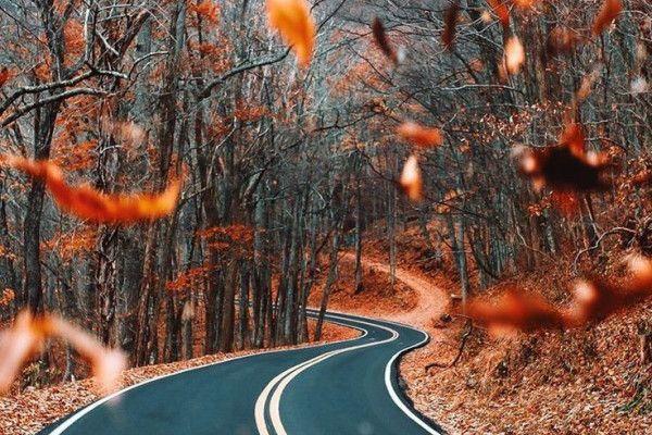 Autumn Aesthetic Laptop Wallpapers - Top Free Autumn ...