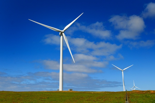 Wind farm at Cape Nelson South, Victoria  #renewable #energy