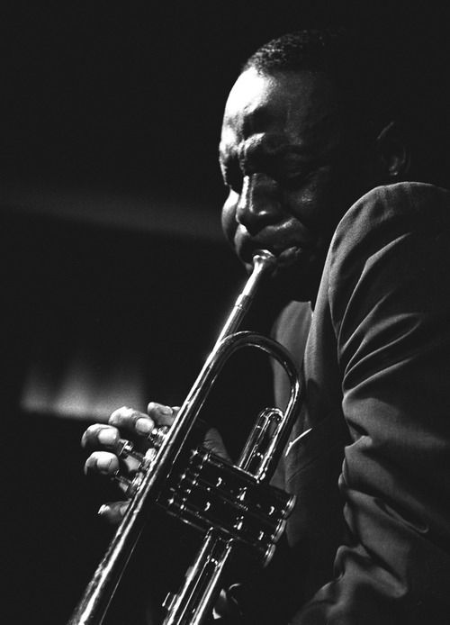 """""""Louis Armstrong changed all the brass players around, but after Bird, all of the instruments had to change - drums, piano, bass, trombones, trumpets, saxophones, everything."""" - Cootie Williams"""