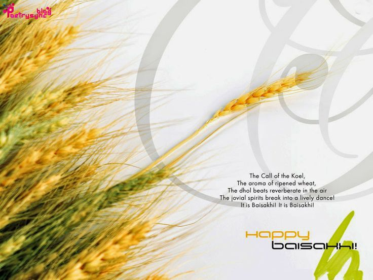 Happy Baisakhi Wishes Quote and Message
