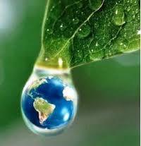 Resultado de imagen para porque es importante estudiar ciencias ambientales