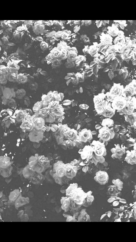 Tumblr iphone wallpaper soft grunge - Soft Grunge