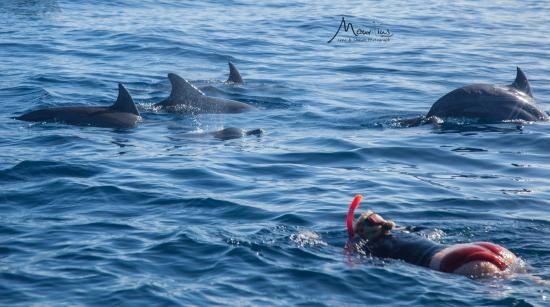 Tamarin Bay (Mauritius, Afrika) - Beoordelingen - TripAdvisor