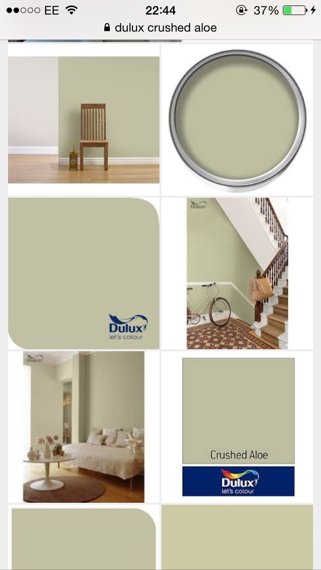 Dulux crushed aloe paint for the Kitchen