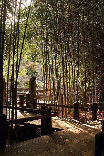 Japanese Garden in Huntington Library, #SanMarino, California #Luxury #Travel Gateway VIPsAccess.com