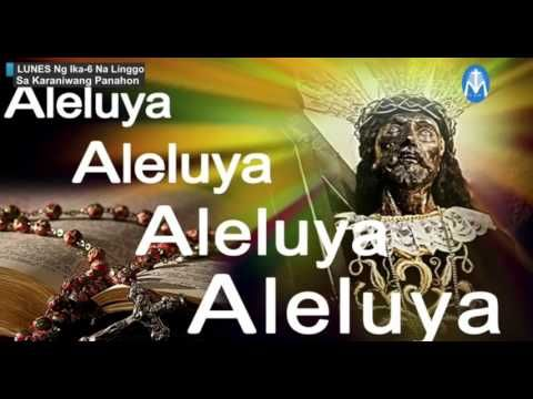 "TV MAss - ""Monday Mass 6th week Ordinary Time - Quiapo Black Nazarene"