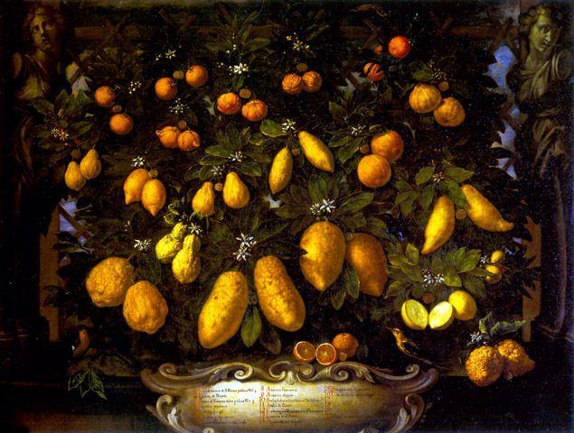 Bimbi, Bartolomeo (1648-1729)