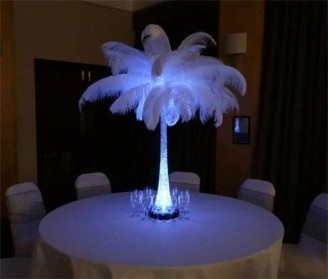 Illuminated Ostrich Feather Centrepiece : Affordable Dreams
