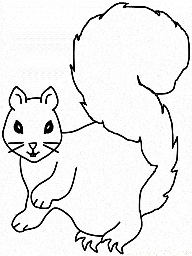 squirrel coloring pages to print - Free Coloring Pages Of Squirrels