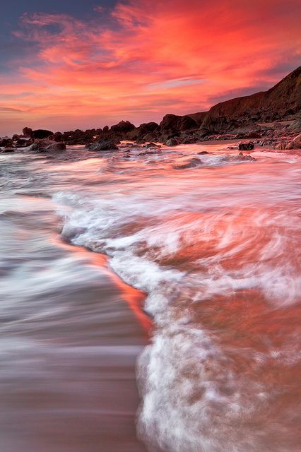 Bodega Bay, California! Beautiful Pinks