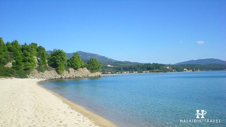 #Lagomandra #beach in #Halkidiki. Visit www.halkidikitravel.com for more info. #HalkidikiTravel #travel #Greece