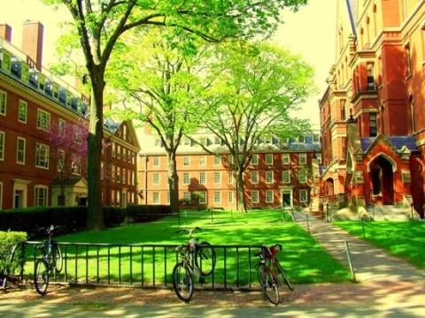 Harvard University, Cambridge, Boston, Massachussets, USA http://www.stopsleepgo.com/vacation-rentals/massachusetts/united-states