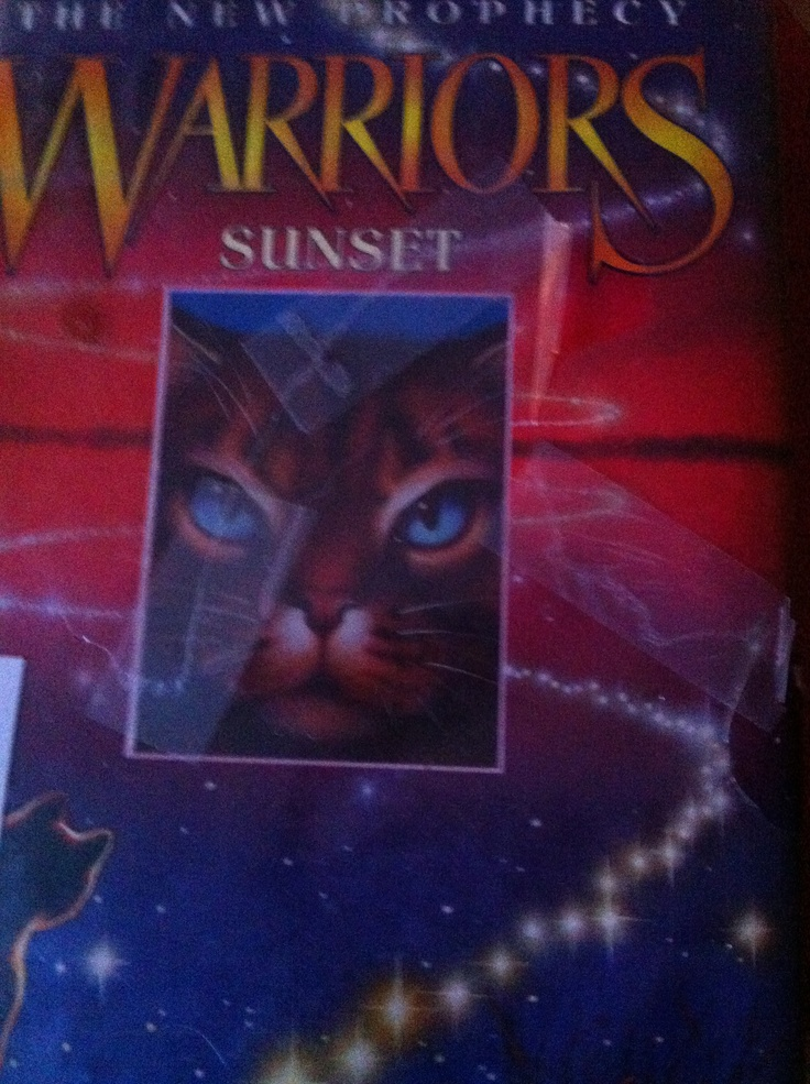 Sunset, the 6th book in The New Prophecy, now reading