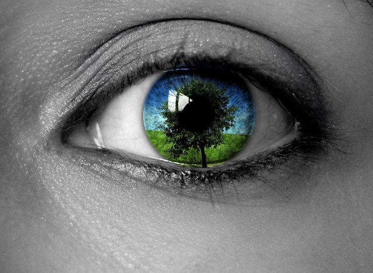 Ambiente - Politiche per la riduzione dell'inquinamento e tutela del territorio - www.nuovatortona.it
