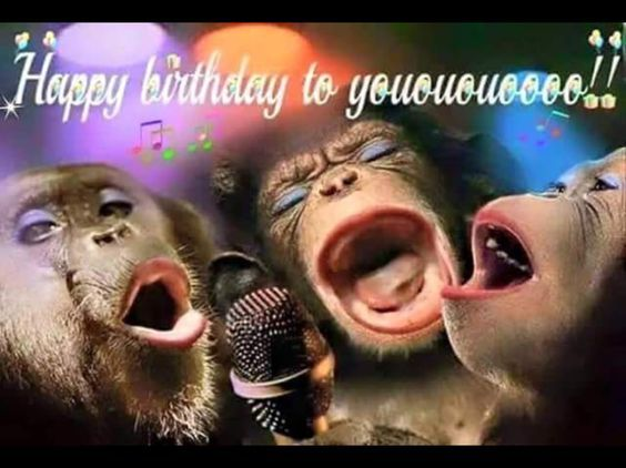 Adult Humorous Happy Birthday Pictures 30