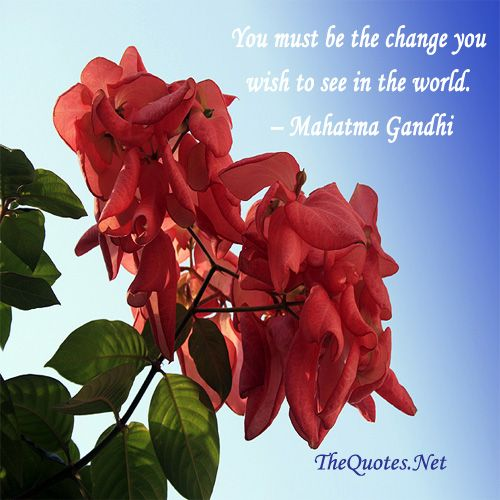 You must be the change you wish to see in the world  - Mahathma Gandhi