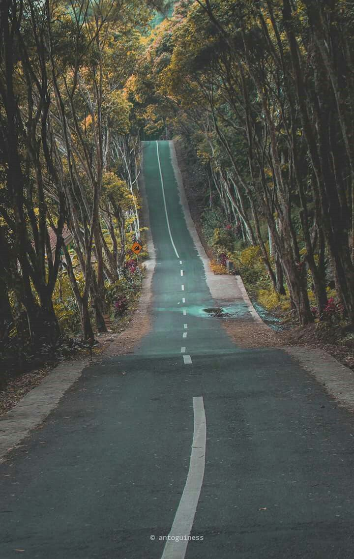 Jalan panjang  Pemandangan dan Jalan