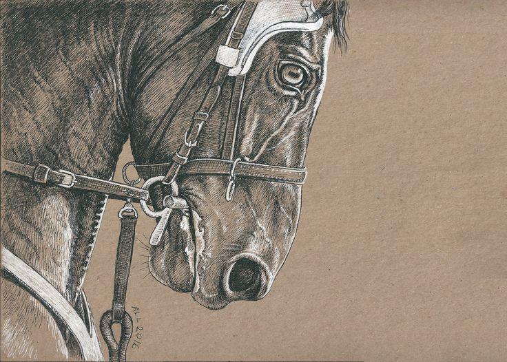 Крикет- орловский жеребец  A4/ крафт бумага/гелевые ручки/ по фото Анны Рахманиной #art #pen #drawing #larisa_andrianova #trotting_race_horse #harness_racing #hippodrome #орловский_рысак #orlov_trotter