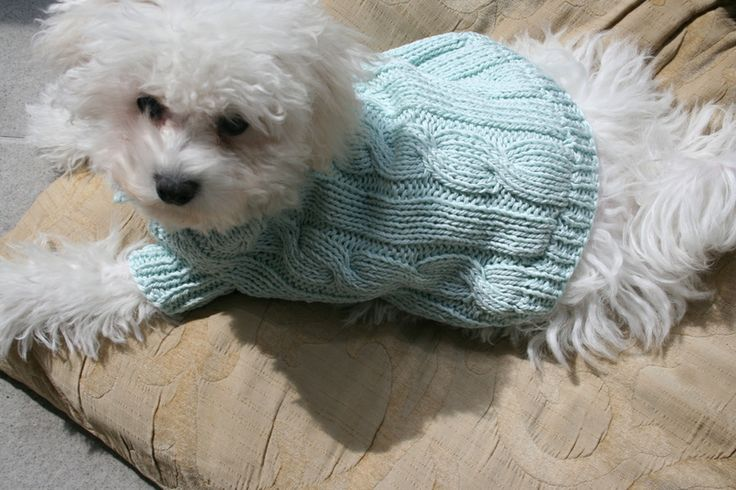 Pet Clothing Dog Clothes Hand Knit Dog Outfit  from BubaDog by DaWanda.com