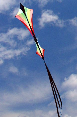 Our online kite store has hundreds of kites for sale for all ages, Kites For Kids, Stunt Kites, single line kites, kite accessories, banners, garden art, lawn and wind spinners - order securely online.
