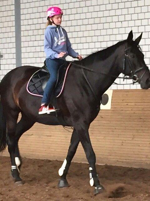Bestes Pferd ever