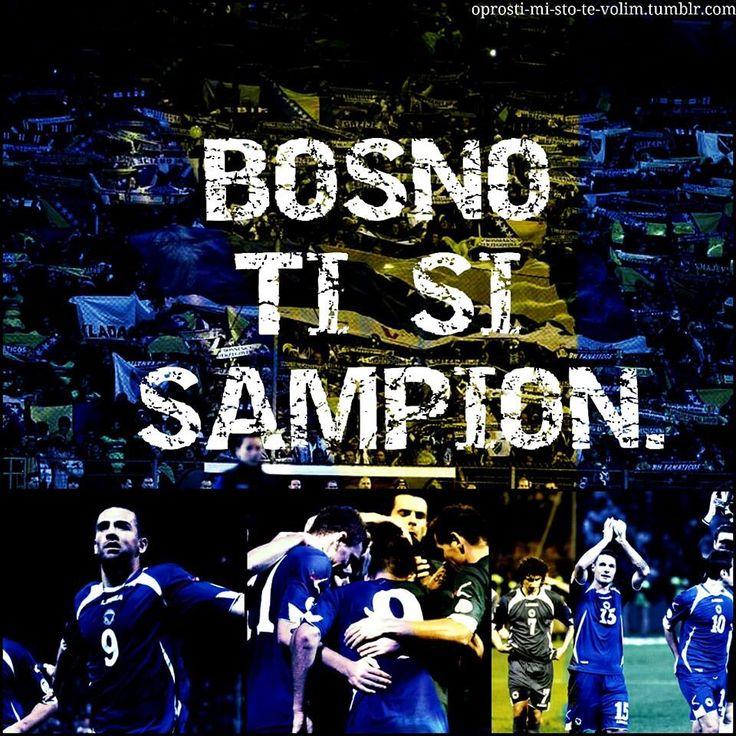 Truth Bosnia and Herzegovina national soccer team BiH