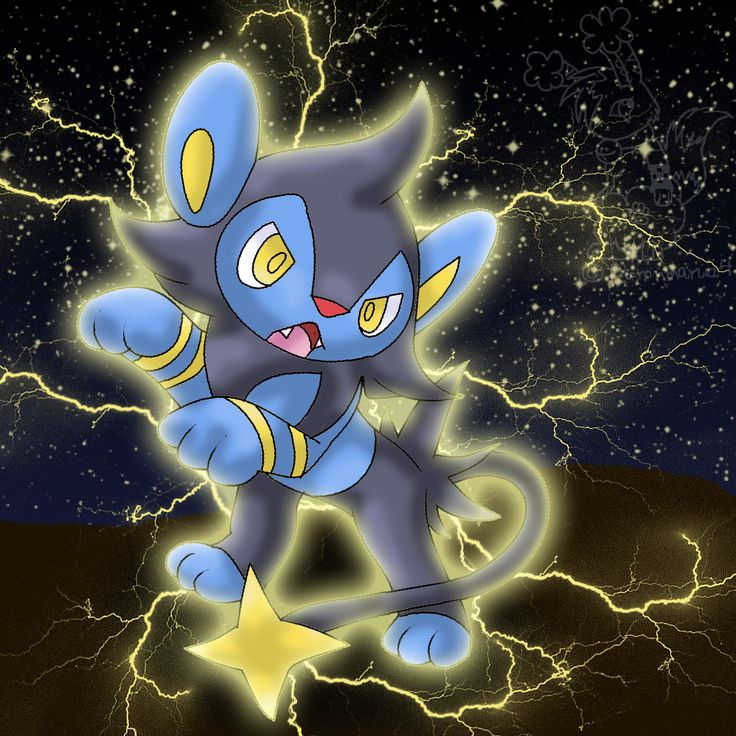 pachirisu evolution chain - photo #26