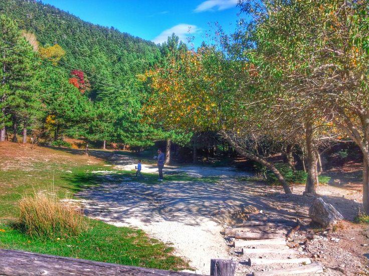 Parnitha mount, Attica, Greece
