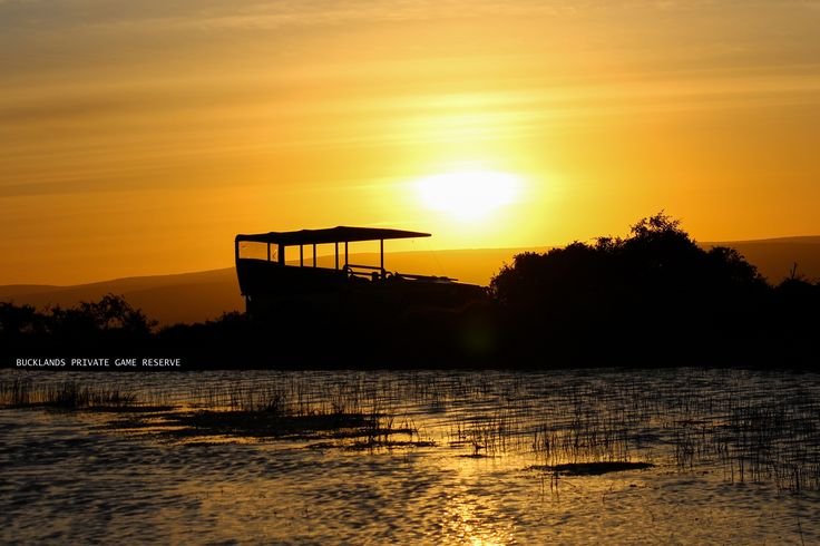 Sunset and silhouette game viewer #photography #sunset #gamedrives #bucklandsprivategamereserve