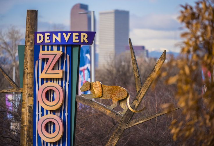 2020 FreeAdmission Dates to the Denver Zoo Announced
