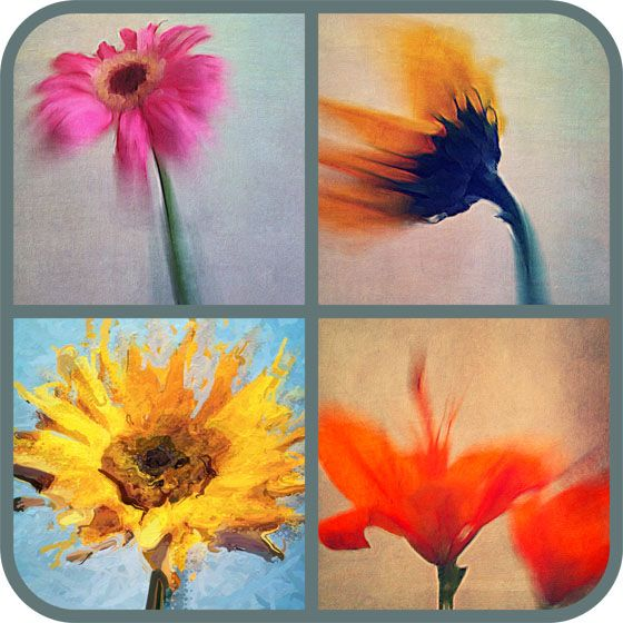 Best photo collage app for iPhone