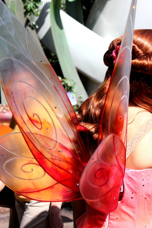Fairy wings - Ooooooooo!!! pretty!! I like the color transition