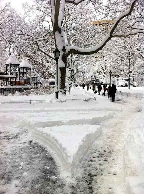 Snow in New York City - Madison Square Park by Flatiron Building by David Berkowitz, via Flickr