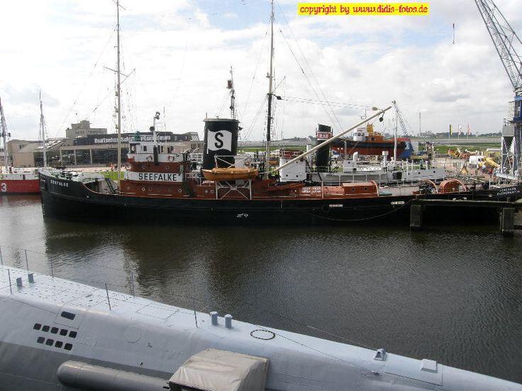 """""""Seefalke"""" in Bremerhaven"""