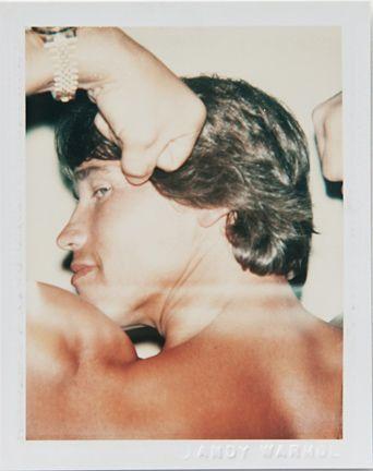 Arnold Schwarzenegger - Andy Warhol's Polaroid Portraits
