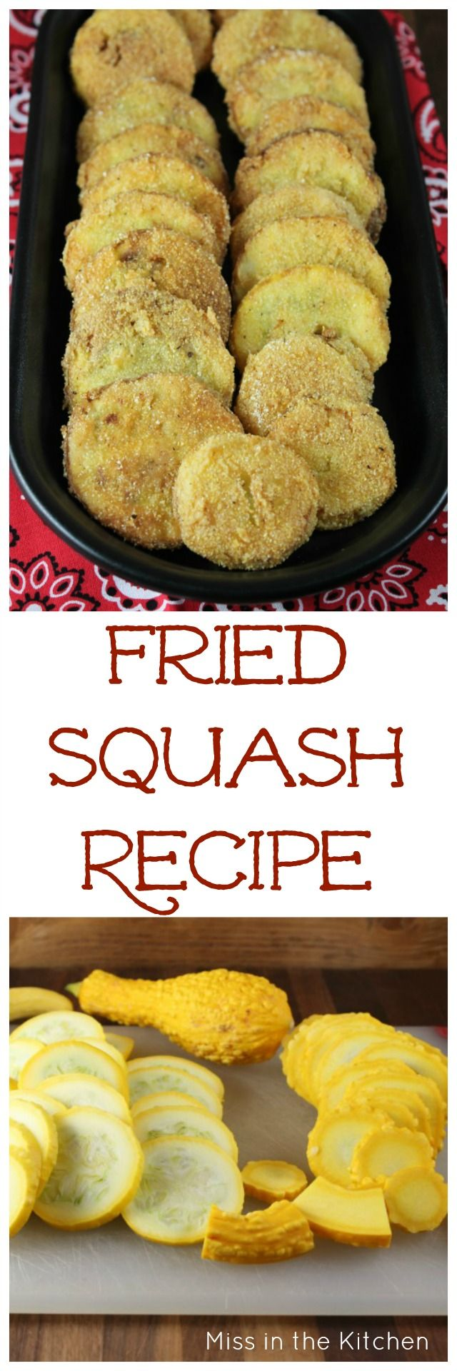 Fried Squash Recipe found at MissintheKitchen.com
