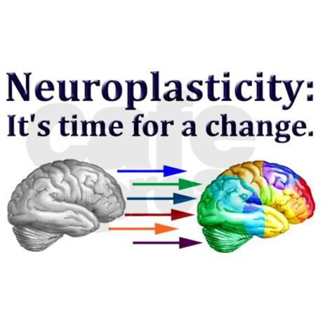 Neuroplasticity Mug by neuro4kids