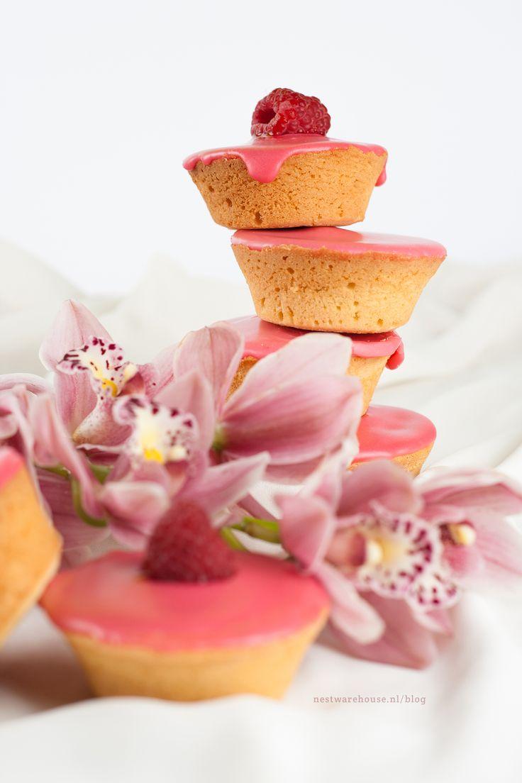 BLOG - Roze koeken met frambozenglazuur - Nest Warehouse