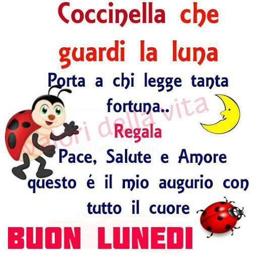 Buongiorno# lunedì# coccinella# fortuna# poesia#