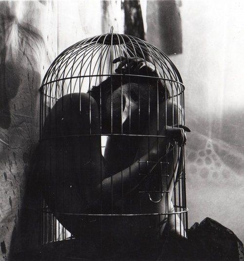 .: Building, Cages Man, Birdcages, Dark Side, Photography Art, Beautiful Dark, 500535 Pixel, Black, Dark Inside