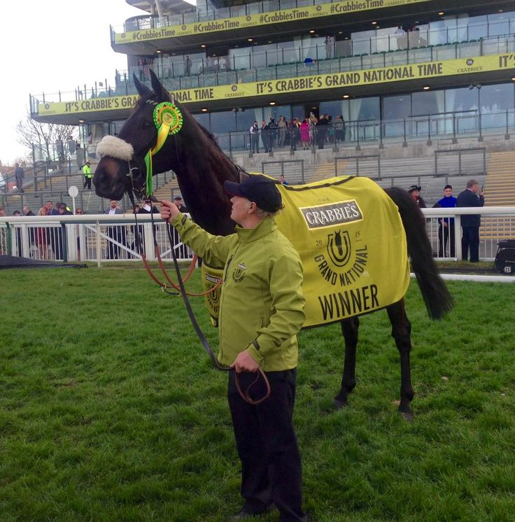 2015 Grand National hero Many Clouds