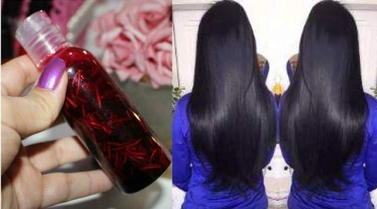 Óleo caseiro de hibisco para fazer o cabelo crescer muito rápido