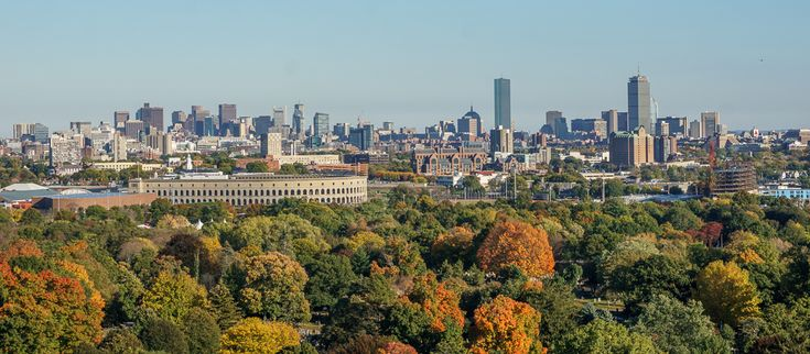 Harvard Stadium, from Mount Auburn Cemetery - Cambridge