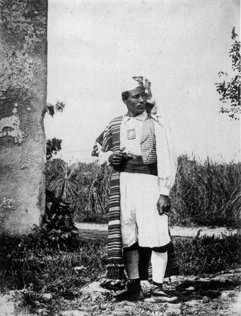El hortelano en 1870