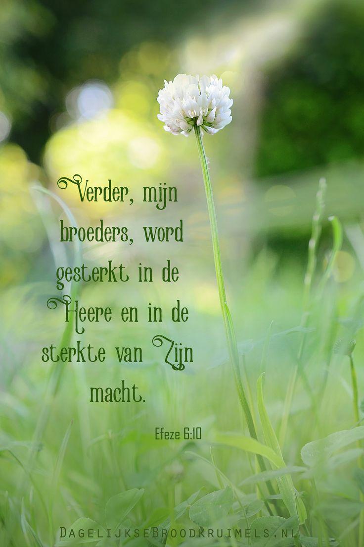 Efeze 6:10  Verder, mijn broeders, word gesterkt in de Heere en in de sterkte van Zijn macht. Efeze 6:10