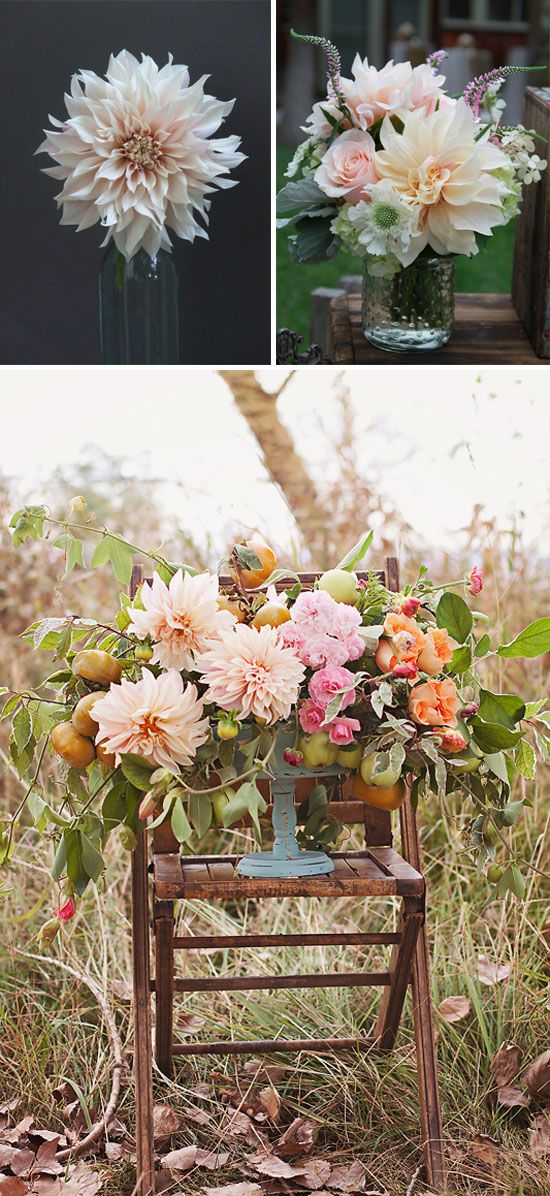 cafe au lait dahlias so pretty weddings pinterest