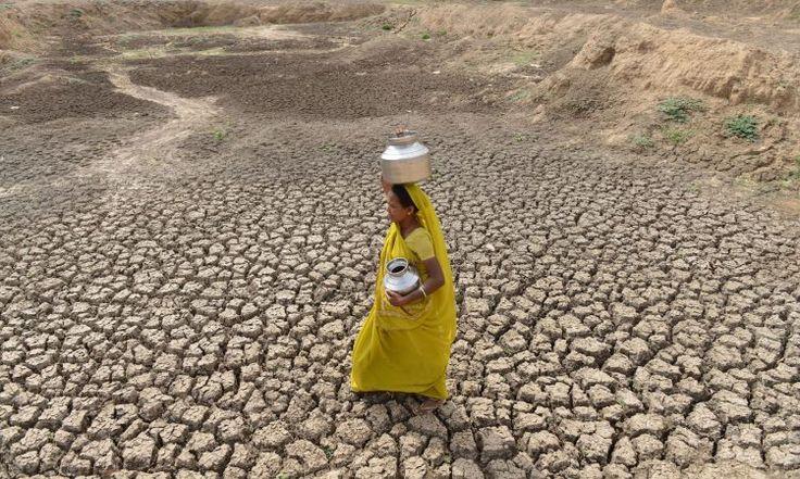 Medyascope ///  Küresel iklim değişikliği çiftçiler arasında intiharı arttırıyor!