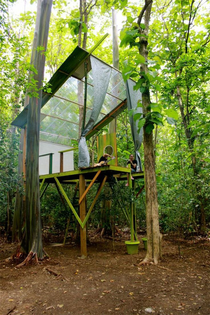 best 25 modern tree house ideas on pinterest tree house designs i like the transparent ceiling roof idea cantilevered tree house in the puerto rico