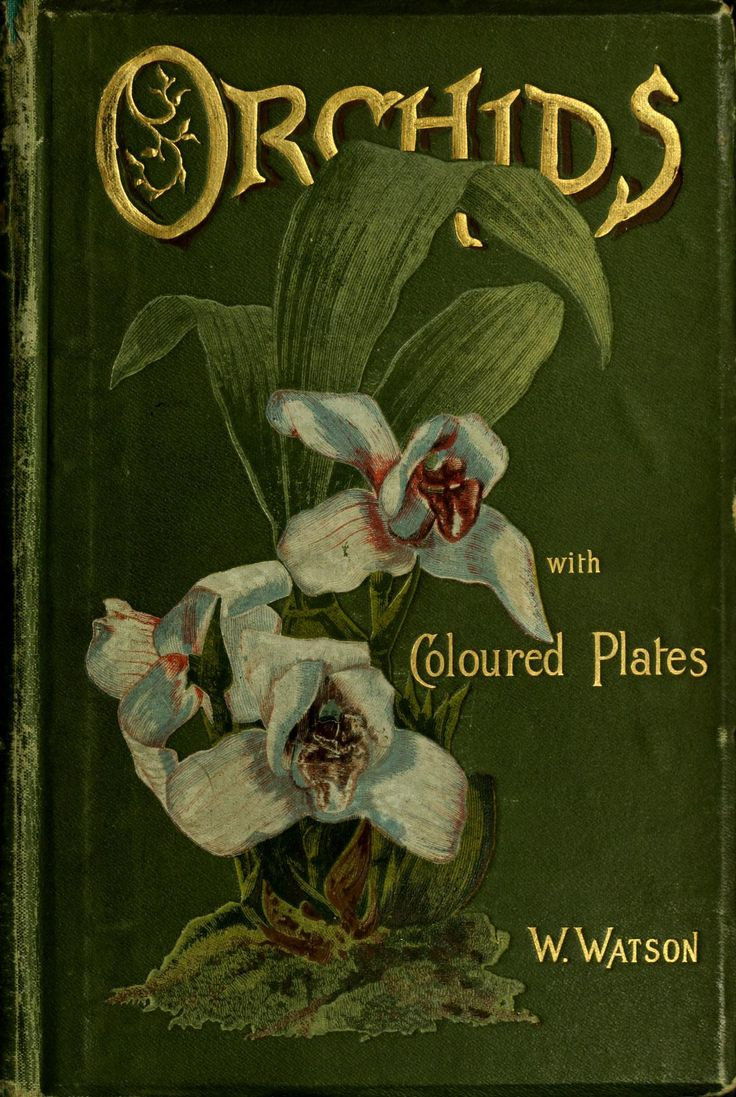 Orchids With Colour Plates by W. Watson, 1890 (1) From Lady Gray Dreams, please visit